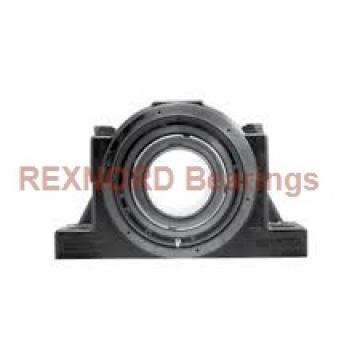 REXNORD MBR2203A43  Flange Block Bearings